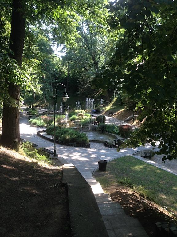 Jagodina park
