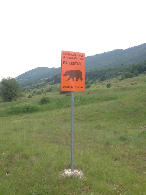 Opi beerwaarschuwing