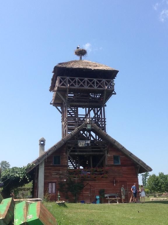 Z uitkijktoren